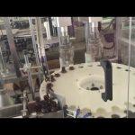 tvornička cijena automatski brzi stroj za zatvaranje boca s okretnom bocom